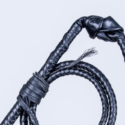Látigo Stock Whip